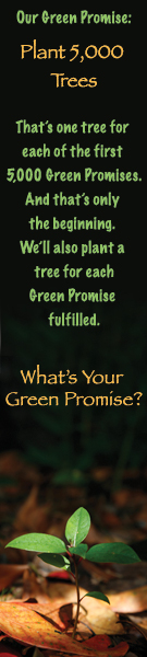 What's Your Green Promise
